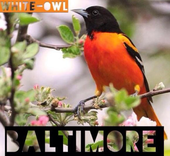 BALTIMORE MIXTAPE COVER